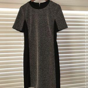 Classic short sleeve fall/winter/transition dress
